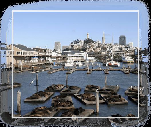 Client Center Golden Gate Wealth Management San